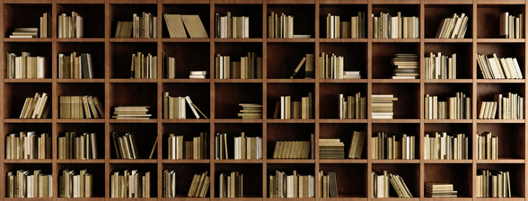 Natural Bookcase Wallpaper Mural wallpaper mural