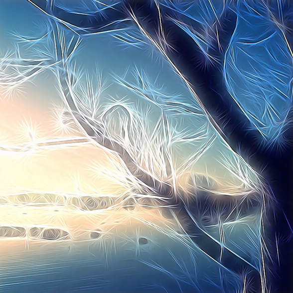 Light Frozen Morning wallpaper mural