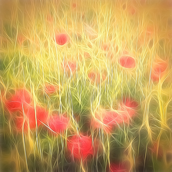 Light Poppy Party wall mural