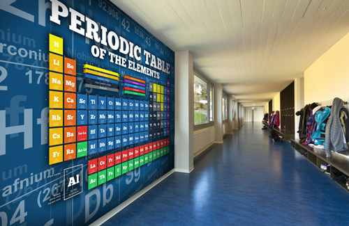 wall murals amp wallpaper for schools amp colleges wallsauce wall mural ideas for businesses retail decor ideas