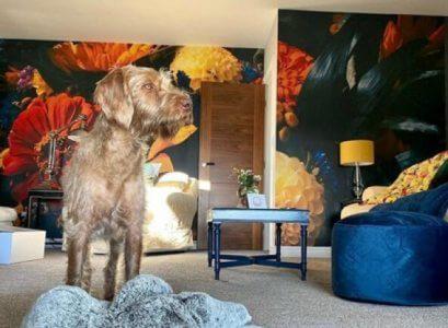 dark floral wallpaper in living room