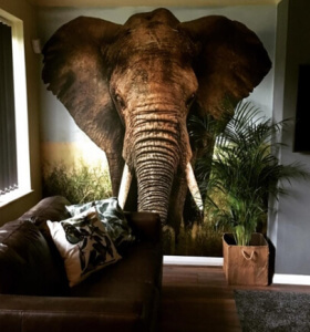 elephant wallpaper in living room