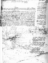 Fol.145v-a, page from Da Vincis notebook (pen & ink on paper) wall mural thumbnail