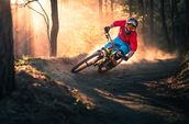 Mountain Biker wall mural thumbnail