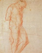 Study of a Nude (red chalk on paper) wall mural thumbnail