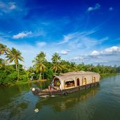 Kerala Backwaters mural wallpaper thumbnail