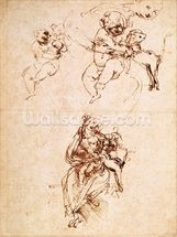 Studies for a Madonna with a Cat, c.1478-80 (pen and ink on paper) mural wallpaper thumbnail