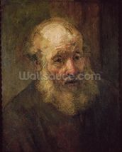 Head of an Old Man, c.1650 (oil on canvas) wall mural thumbnail