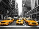 Manhattan Yellow Taxis wall mural thumbnail