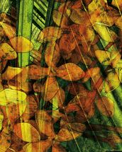 Collage Of Palm Leaf And Orchids mural wallpaper thumbnail