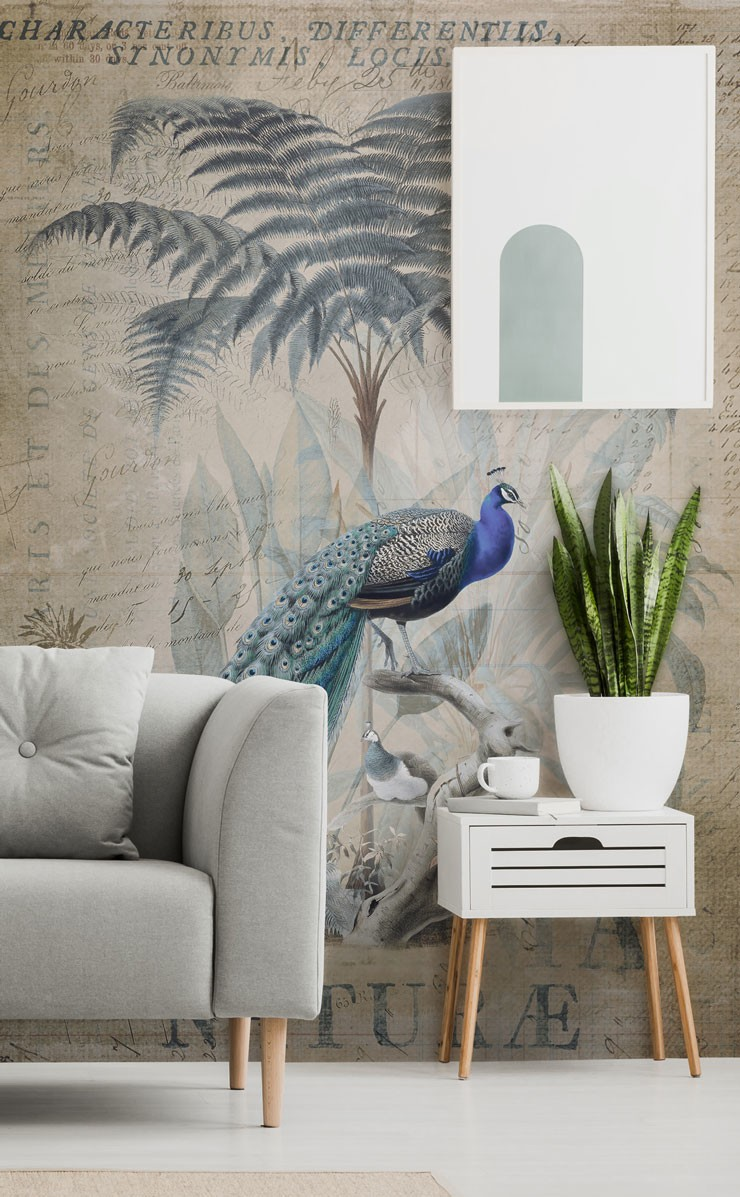 simple vintage style peacock wallpaper in beautiful living room