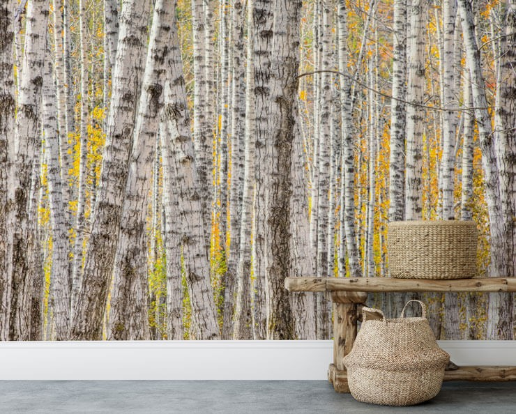 yellow and white forest wallpaper in room with wicker basket