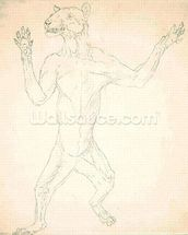 Study of a Tiger, Standing in Human Posture, from A Comparative Anatomical Exposition of the Structure of the Human Body with that of a Tiger and a Common Fowl, 1795-1806 (graphite on thin wove paper) mural wallpaper thumbnail