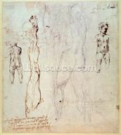 Anatomical drawings with accompanying notes (red chalk) wallpaper mural thumbnail