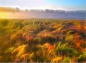 Light Misty Heath wall mural thumbnail