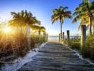 Boardwalk Sunrise wall mural thumbnail