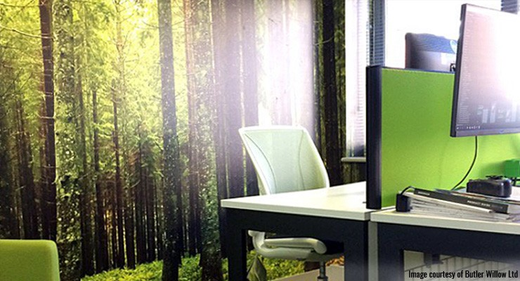 Green-tree-mural-in-office