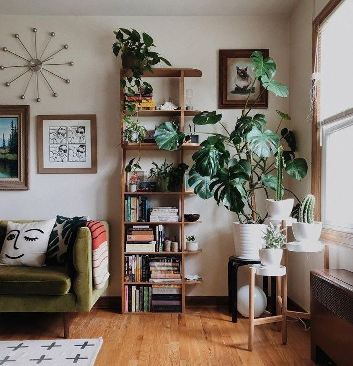 trendy living room with green sofa, book shelves and lots of green tropical plants