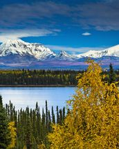 View Of Mt. Sanford and Mt. Drum with Willow Lake mural wallpaper thumbnail
