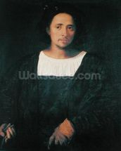 Man with a Glove, 1517-20 (oil on canvas) mural wallpaper thumbnail