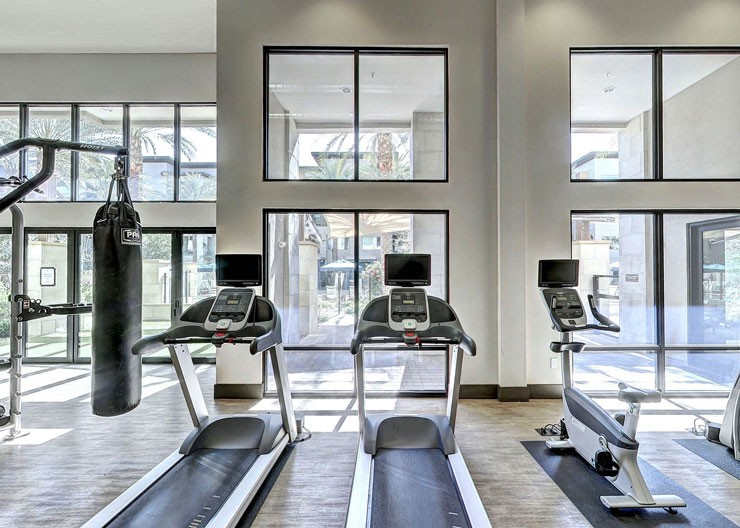 light, airy and modern residential gym
