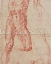W.13r Study of a male nude, stretching upwards (chalk on paper) mural wallpaper thumbnail