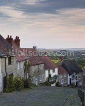 Shaftesbury wallpaper mural thumbnail