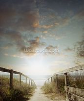 Atlantic Coast Beach Walkway wall mural thumbnail