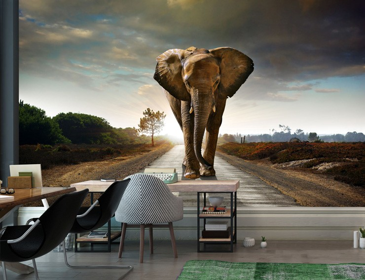Walking-Elephant-mural-from-Wallsauce