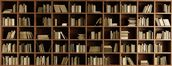 Natural Bookcase Wallpaper Mural wallpaper mural thumbnail