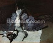 Still-Life: Heron with Spread Wings, 1867 (oil on canvas) mural wallpaper thumbnail
