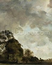 Landscape at Hampstead, Tree and Storm Clouds, c.1821 (oil on paper laid down on panel) wallpaper mural thumbnail