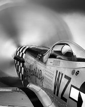 p-51 Fighter wall mural thumbnail