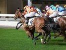 Horse Racing in Hong Kong wall mural thumbnail