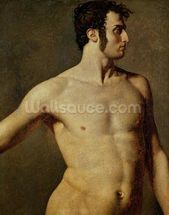 Male Torso, c.1800 (oil on canvas) wallpaper mural thumbnail