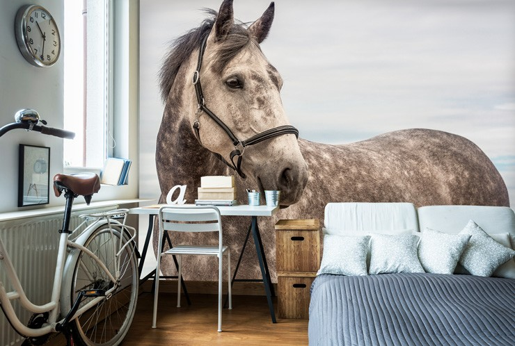 Horse_wallpaper_in_bedroom