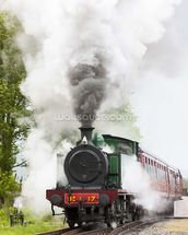 Steam Train in Motion wallpaper mural thumbnail