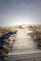 Boardwalk to Nowhere wall mural thumbnail