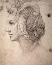 Study of Head (pencil on paper) wall mural thumbnail