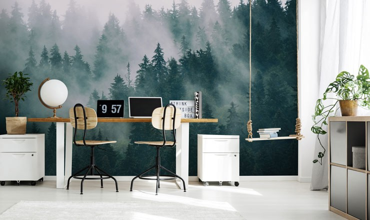 mist covered alpine forest in trendy office