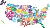 USA Word Cloud Map wallpaper mural thumbnail