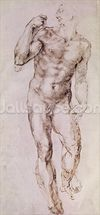 Sketch of David with his Sling, 1503-4 (pen & ink on paper) wallpaper mural thumbnail