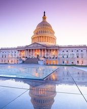 The United States Capitol at Dusk mural wallpaper thumbnail