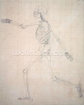 Study of the Human Figure, Lateral View, finished study for Table III, from A Comparative Anatomical Exposition of the Structure of the Human Body with that of a Tiger and a Common Fowl, 1795-1806 (graphite on thin wove paper) mural wallpaper thumbnail