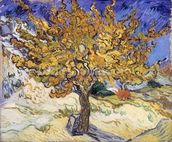 Mulberry Tree, 1889 (oil on canvas) wallpaper mural thumbnail