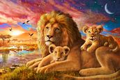 Lion Sunrise wallpaper mural thumbnail