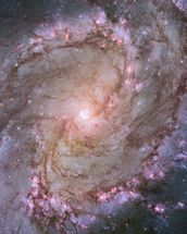 Spiral Galaxy M83 mural wallpaper thumbnail