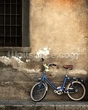 Old Italian Style Bicycle mural wallpaper thumbnail