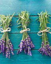 Lavender Bouquets mural wallpaper thumbnail