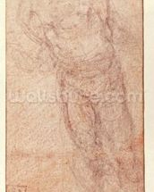 Study for The Resurrection, c.1532-34 (red & black chalk on paper) (recto) wall mural thumbnail